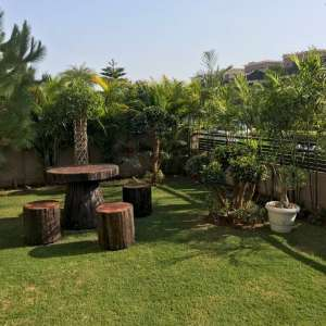 Landscaping and Furniture